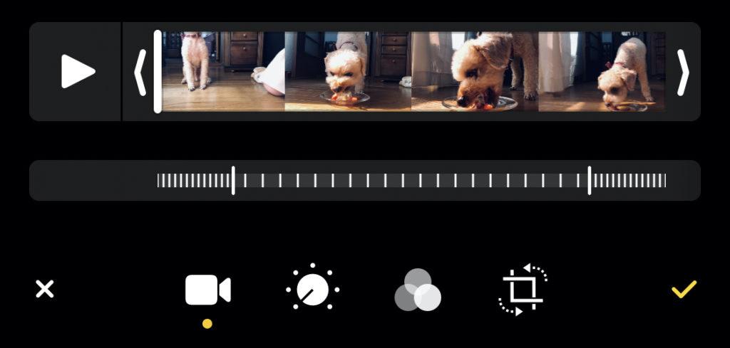 iPhone純正アプリ「写真」|naraco