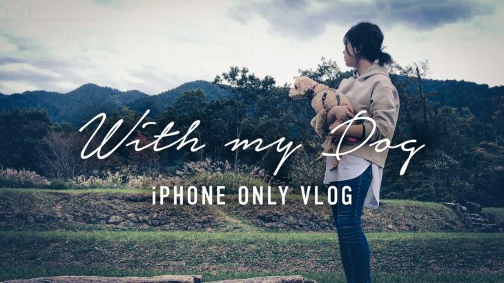 【愛犬Vlog】愛犬と行ける公園|国営飛鳥歴史公園【奈良 明日香村】